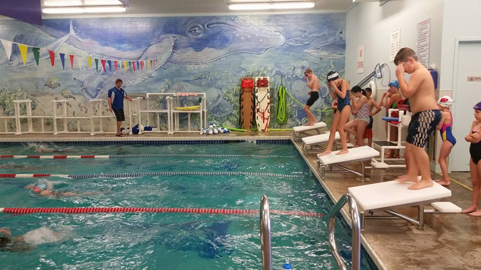 Dive into our Swim Meets!